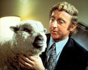 gene_wilder_sheep